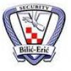 Bilić - Erić logo