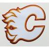 ciklon-vet doo logo