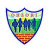 DV Obzori logo