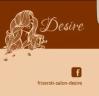 Frizerski salon Desire logo