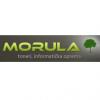 Morula logo
