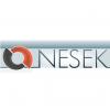 Nesek logo