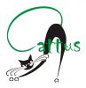 Caffe bar Cattus logo