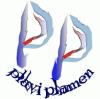Plavi Plamen j.d.o.o. logo