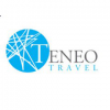 Teneo Data logo