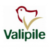 Valipile logo
