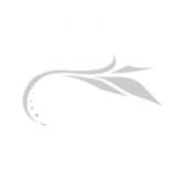 Dorija hoteli logo