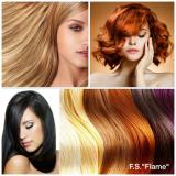 "F.S. ""Flame"" logo"