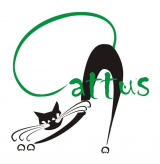 Caffe bar Cattus logo