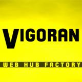 Vigoran logo